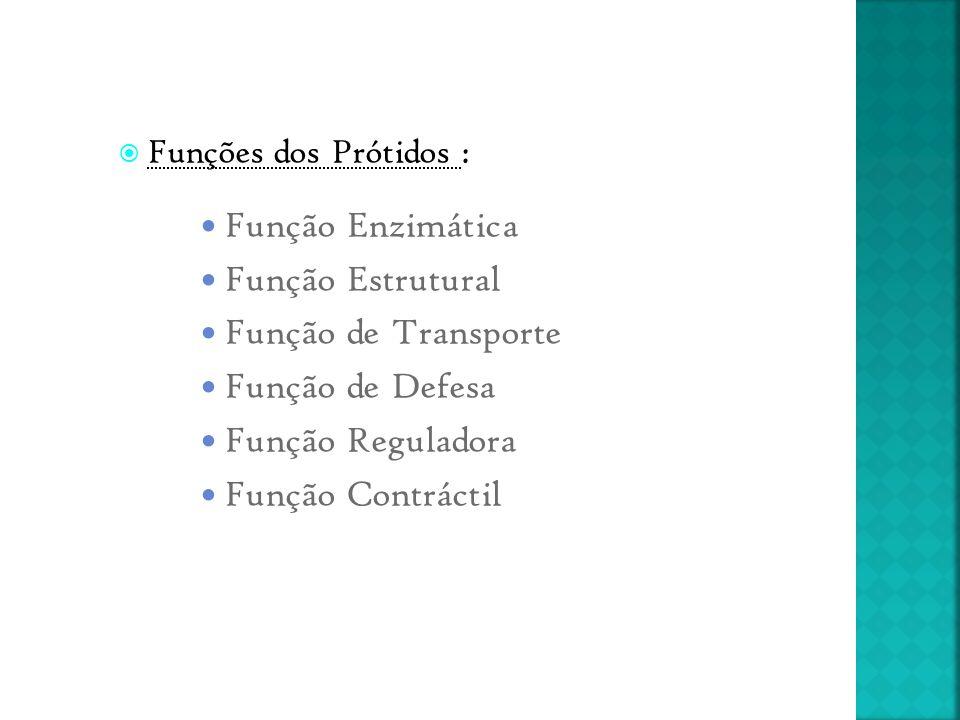 Função Enzimática Função Estrutural Função de Transporte
