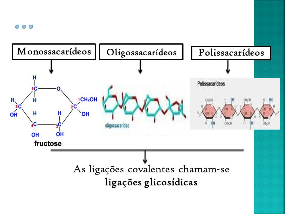 As ligações covalentes chamam-se ligações glicosídicas