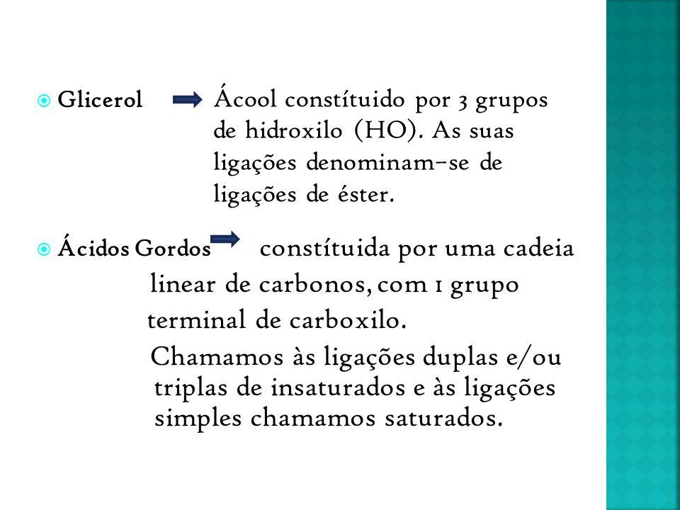 linear de carbonos, com 1 grupo terminal de carboxilo.