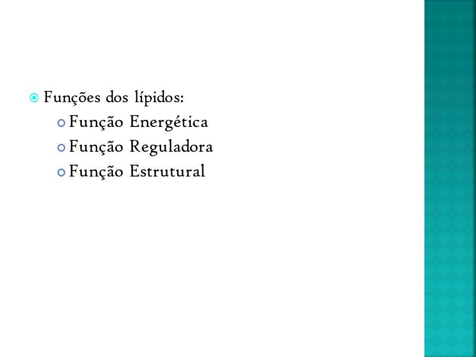 Função Energética Função Reguladora Função Estrutural
