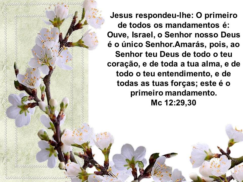 Jesus respondeu-lhe: O primeiro de todos os mandamentos é: Ouve, Israel, o Senhor nosso Deus é o único Senhor.Amarás, pois, ao Senhor teu Deus de todo o teu coração, e de toda a tua alma, e de todo o teu entendimento, e de todas as tuas forças; este é o primeiro mandamento.