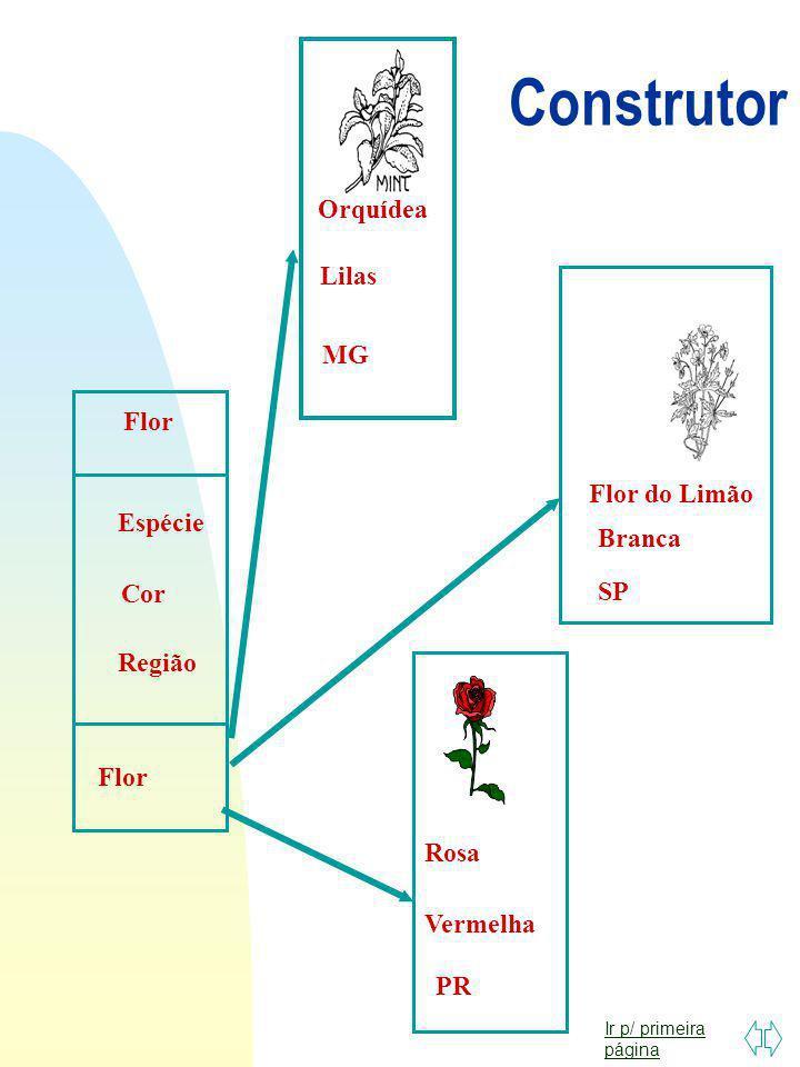 Construtor Orquídea Lilas MG Flor Flor do Limão Espécie Branca Cor SP