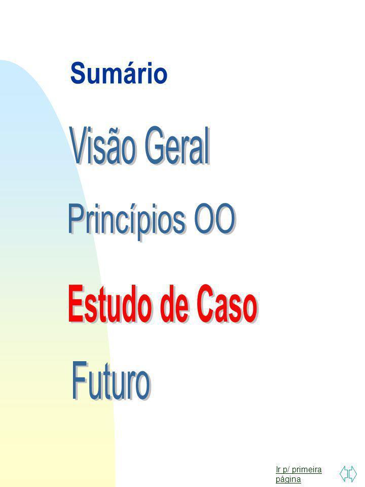 Sumário Visão Geral Princípios OO Estudo de Caso Futuro