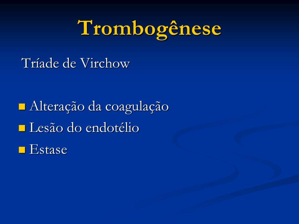 Trombogênese Alteração da coagulação Lesão do endotélio Estase