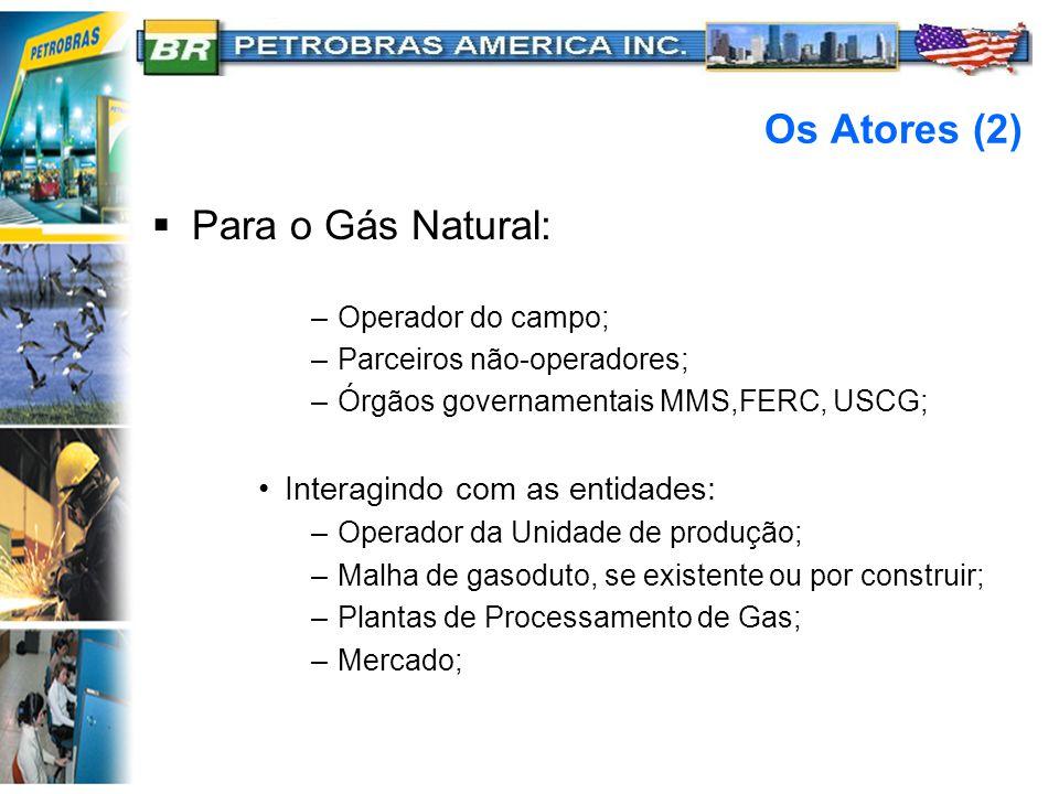 Os Atores (2) Para o Gás Natural: Interagindo com as entidades: