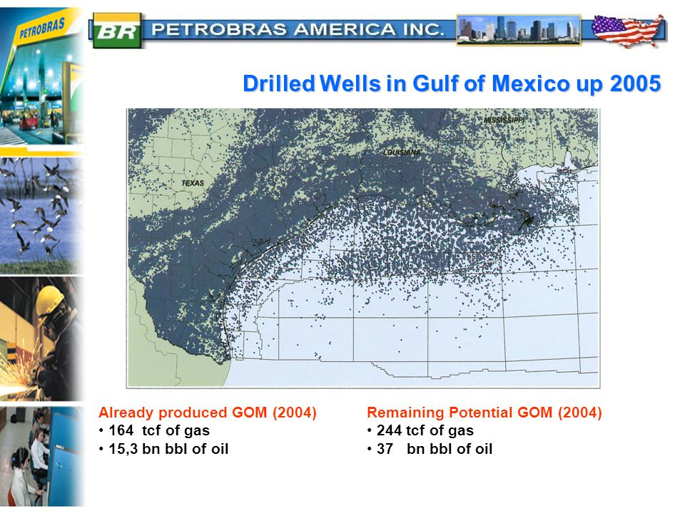 Drilled Wells in Gulf of Mexico up 2005