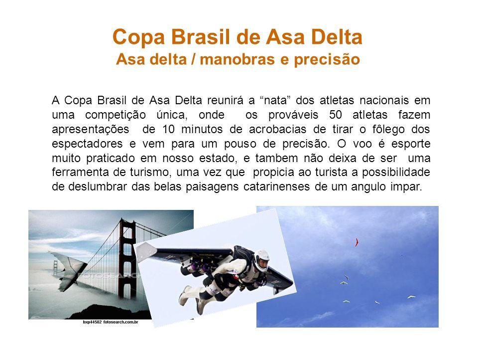 Copa Brasil de Asa Delta