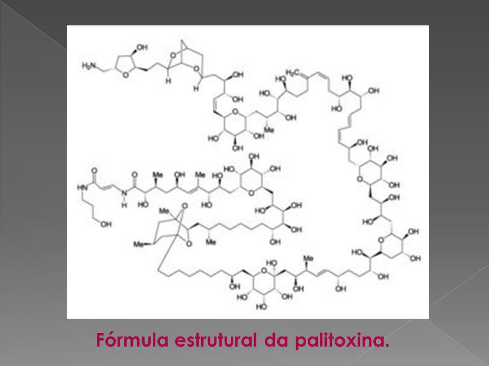 Fórmula estrutural da palitoxina.