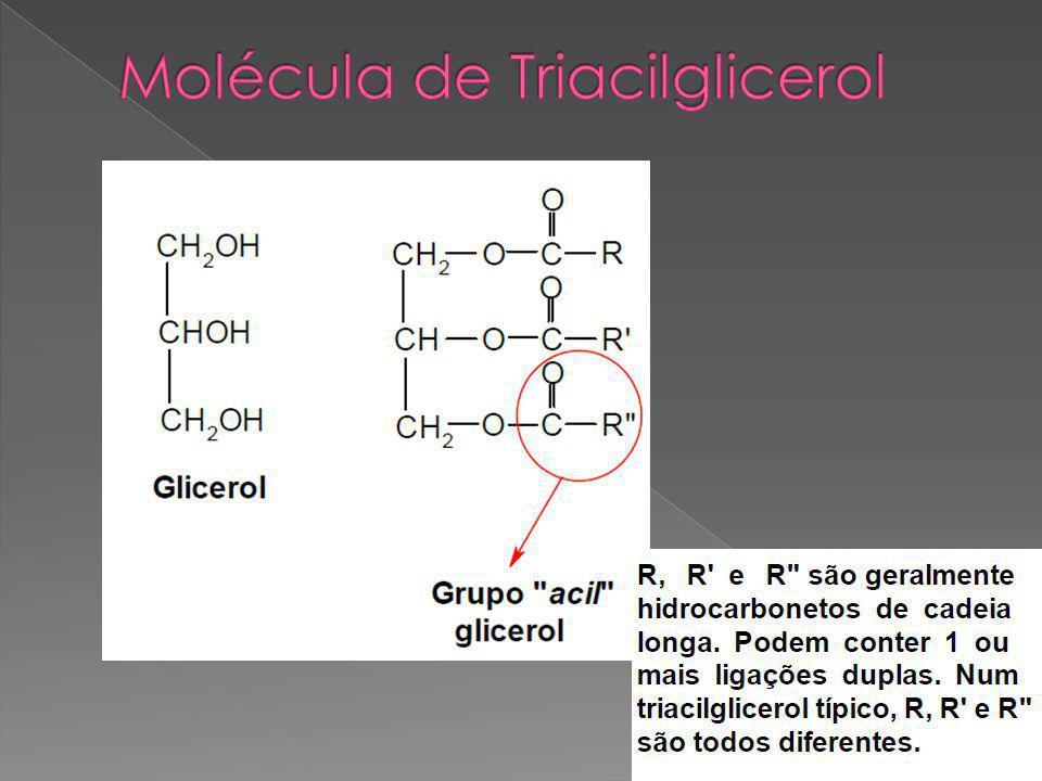 Molécula de Triacilglicerol