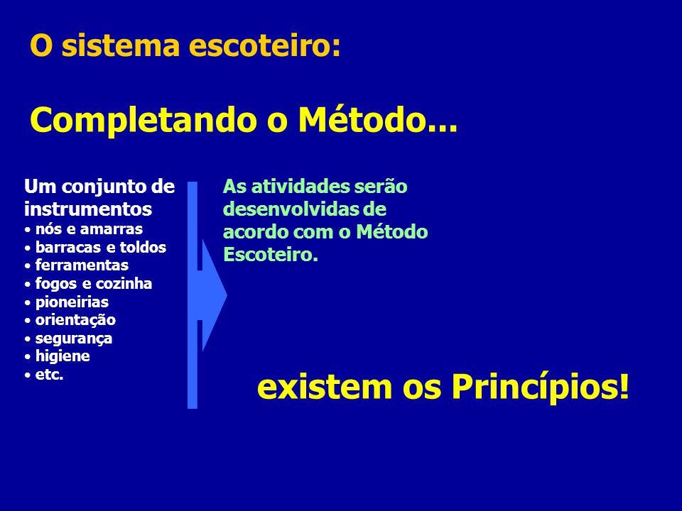 Completando o Método... existem os Princípios! O sistema escoteiro: