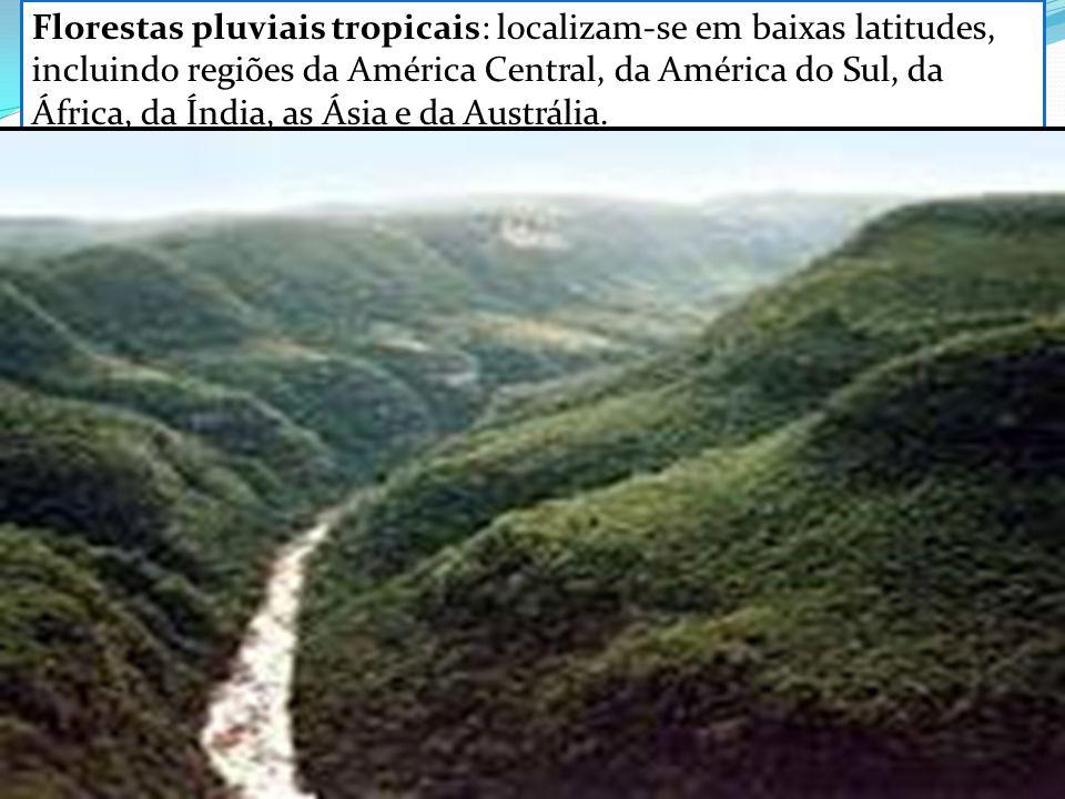 Florestas pluviais tropicais: localizam-se em baixas latitudes, incluindo regiões da América Central, da América do Sul, da África, da Índia, as Ásia e da Austrália.