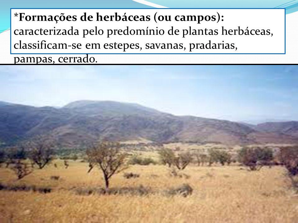 *Formações de herbáceas (ou campos): caracterizada pelo predomínio de plantas herbáceas, classificam-se em estepes, savanas, pradarias, pampas, cerrado.