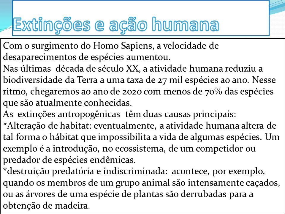 Extinções e ação humana