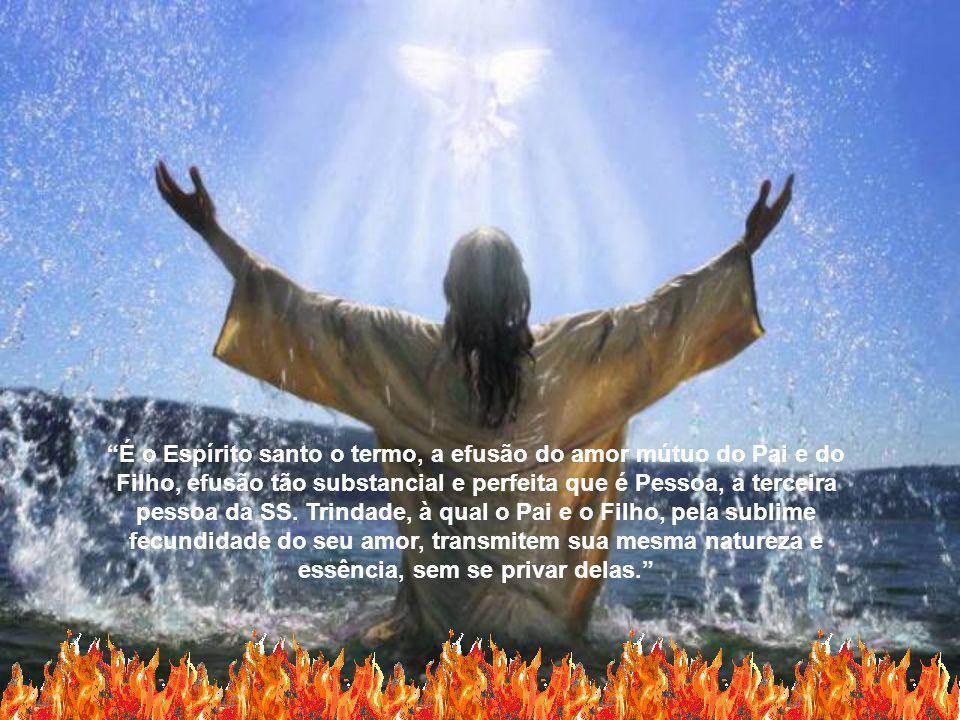 É o Espírito santo o termo, a efusão do amor mútuo do Pai e do Filho, efusão tão substancial e perfeita que é Pessoa, a terceira pessoa da SS.