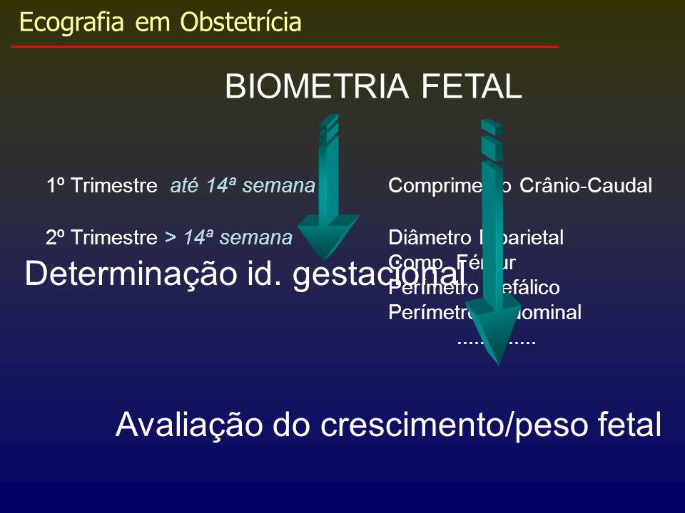 Determinação id. gestacional