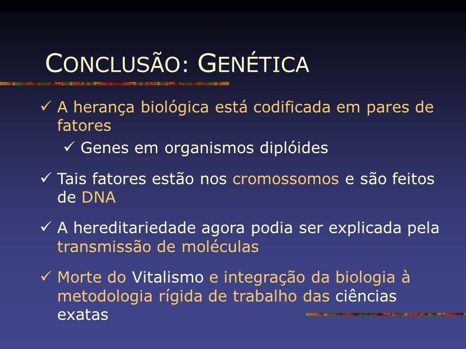 CONCLUSÃO: GENÉTICA A herança biológica está codificada em pares de fatores. Genes em organismos diplóides.