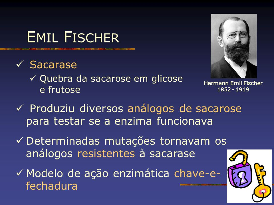 EMIL FISCHER Sacarase. Quebra da sacarose em glicose e frutose. Produziu diversos análogos de sacarose para testar se a enzima funcionava.