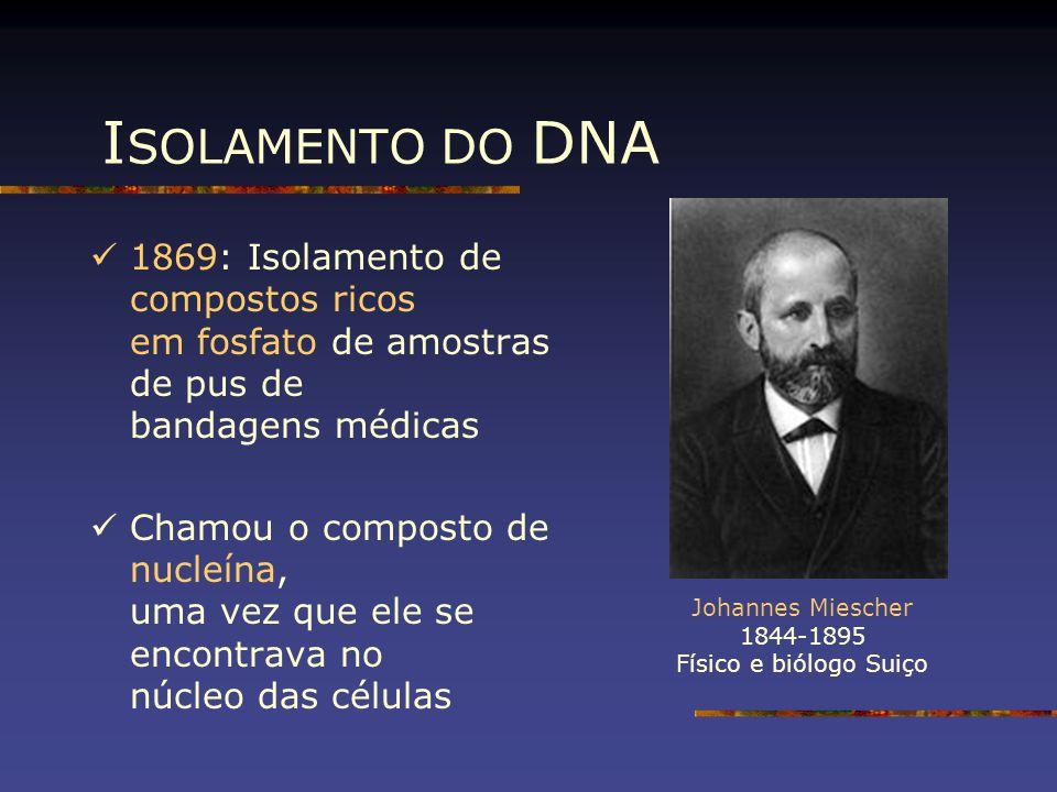 ISOLAMENTO DO DNA 1869: Isolamento de compostos ricos em fosfato de amostras de pus de bandagens médicas.