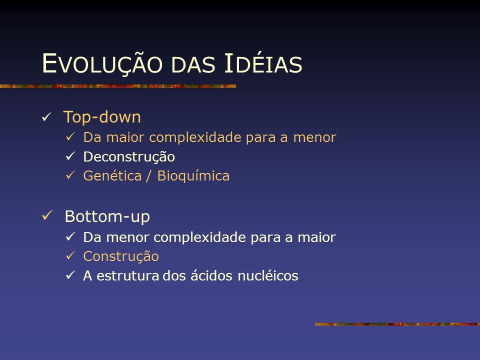 EVOLUÇÃO DAS IDÉIAS Bottom-up Top-down