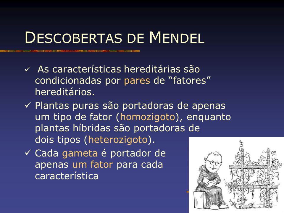 DESCOBERTAS DE MENDEL As características hereditárias são condicionadas por pares de fatores hereditários.