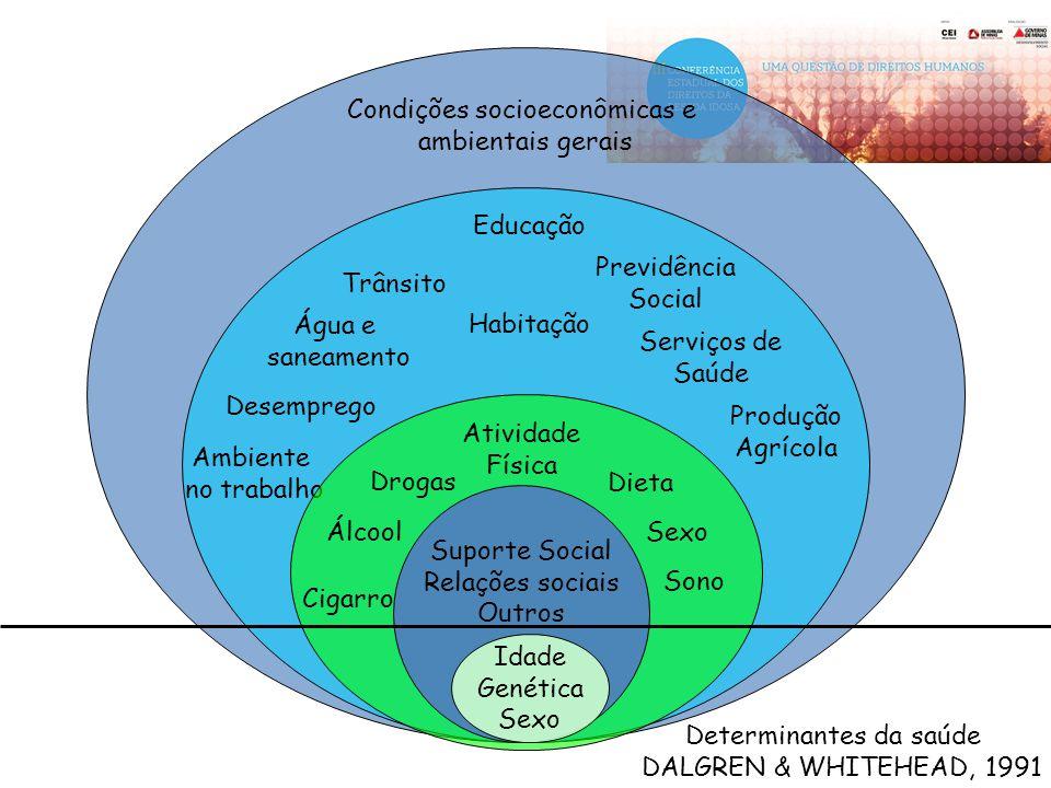 Condições socioeconômicas e ambientais gerais
