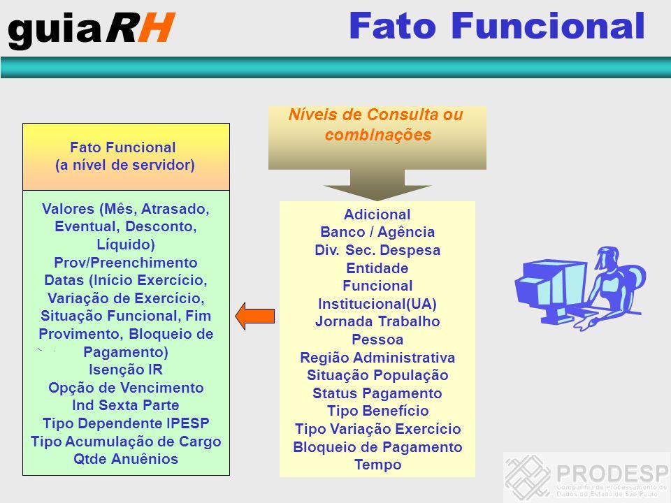 guiaRH Fato Funcional Níveis de Consulta ou combinações Fato Funcional