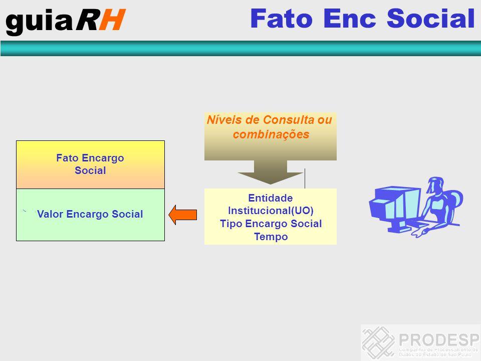 guiaRH Fato Enc Social Níveis de Consulta ou combinações