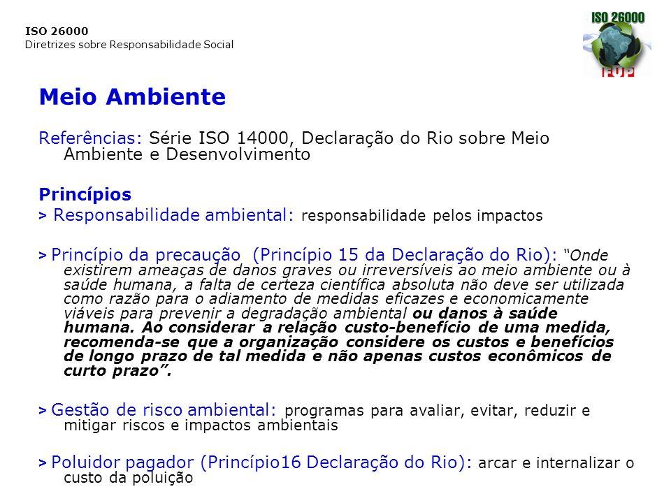 Meio Ambiente Referências: Série ISO 14000, Declaração do Rio sobre Meio Ambiente e Desenvolvimento.