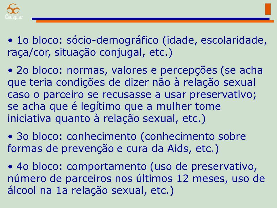 1o bloco: sócio-demográfico (idade, escolaridade, raça/cor, situação conjugal, etc.)