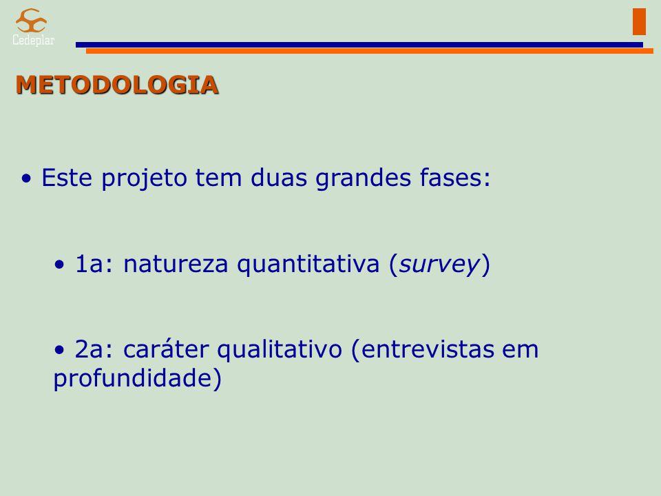METODOLOGIA Este projeto tem duas grandes fases: 1a: natureza quantitativa (survey) 2a: caráter qualitativo (entrevistas em profundidade)