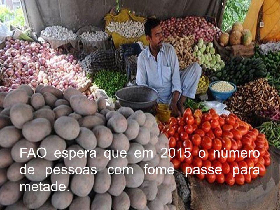 FAO espera que em 2015 o número de pessoas com fome passe para metade.