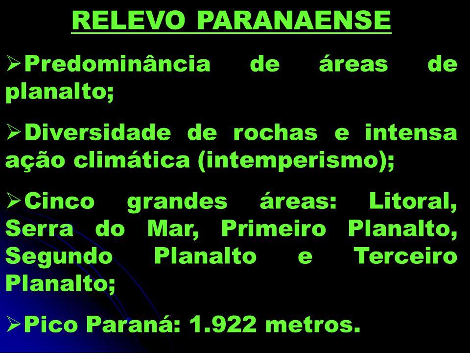 RELEVO PARANAENSE Predominância de áreas de planalto;