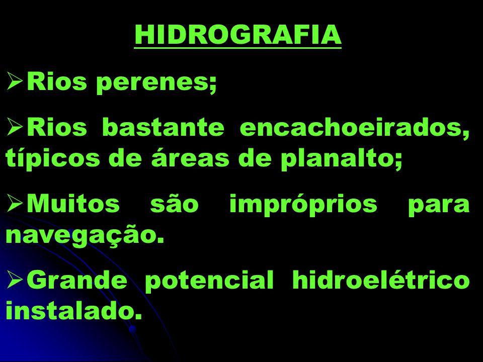 HIDROGRAFIA Rios perenes;