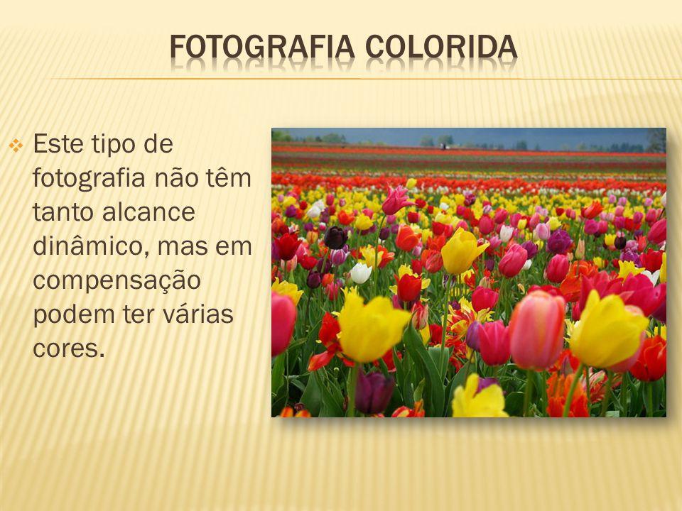 Fotografia colorida Este tipo de fotografia não têm tanto alcance dinâmico, mas em compensação podem ter várias cores.