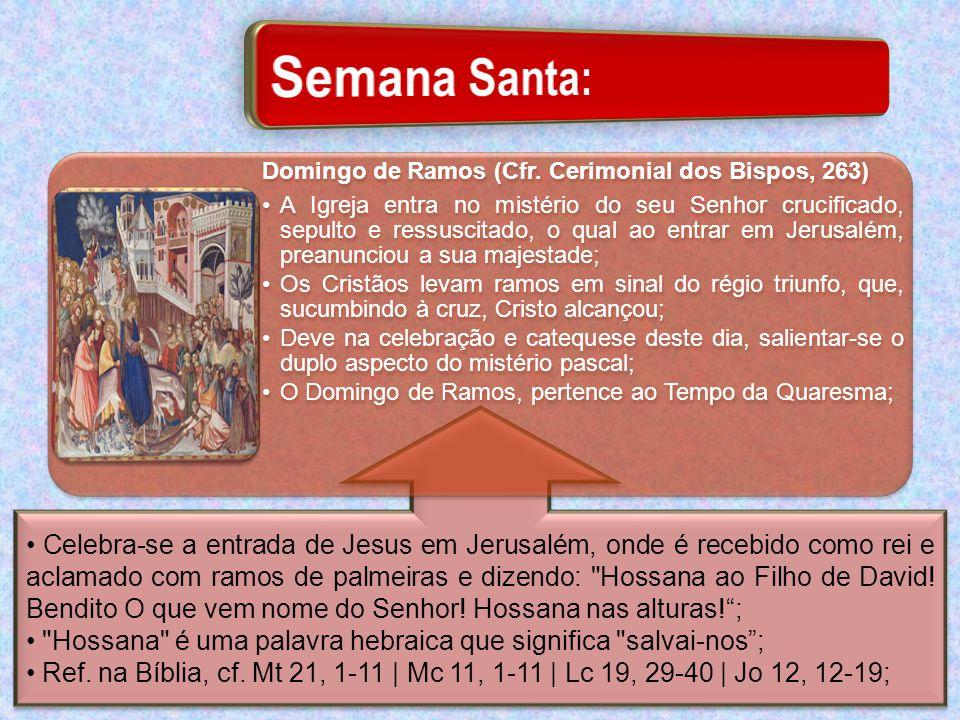 Semana Santa: Domingo de Ramos (Cfr. Cerimonial dos Bispos, 263)