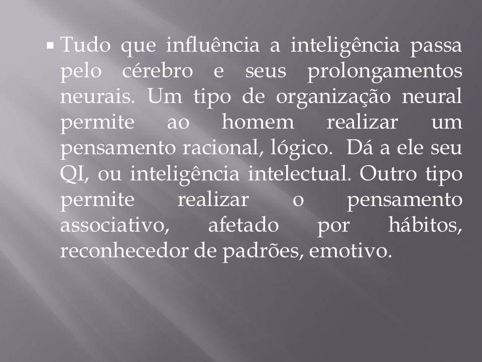 Tudo que influência a inteligência passa pelo cérebro e seus prolongamentos neurais.