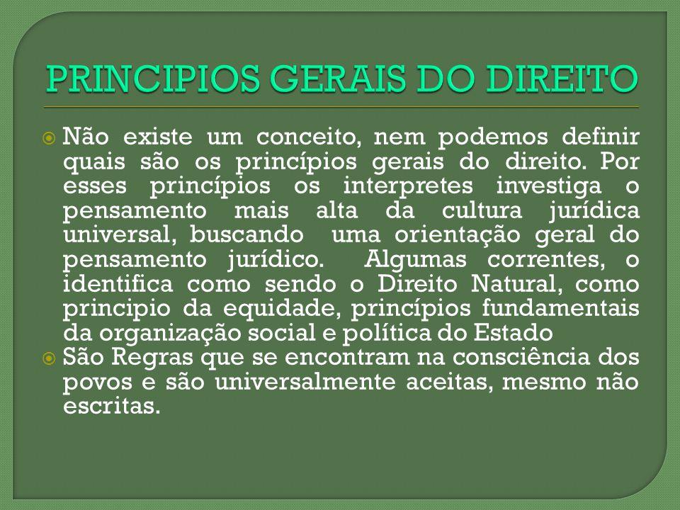 PRINCIPIOS GERAIS DO DIREITO