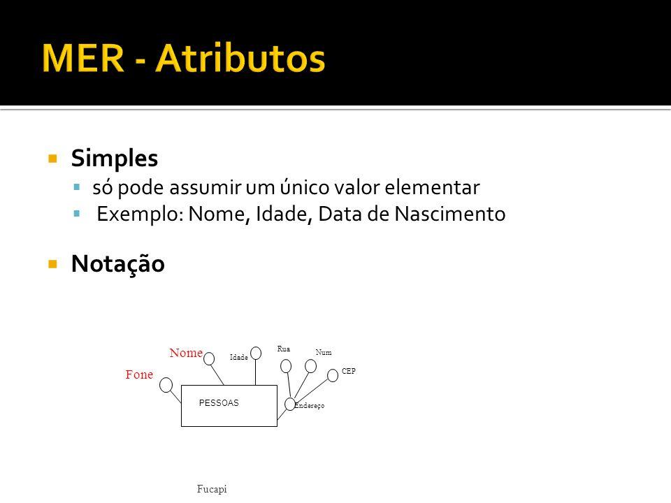 MER - Atributos Simples Notação