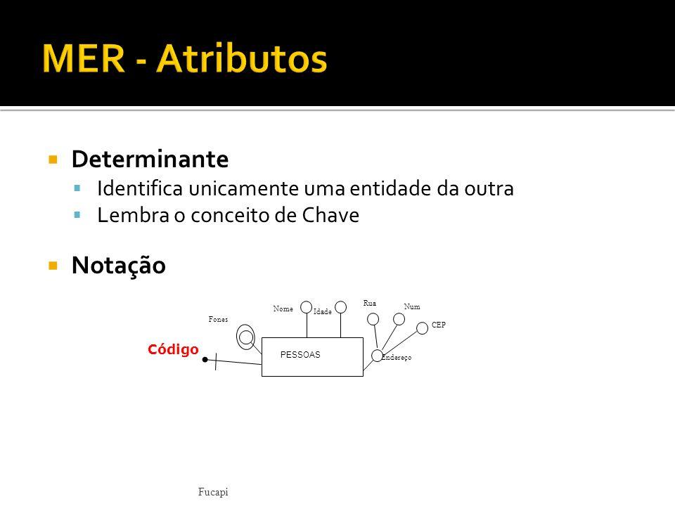 MER - Atributos Determinante Notação