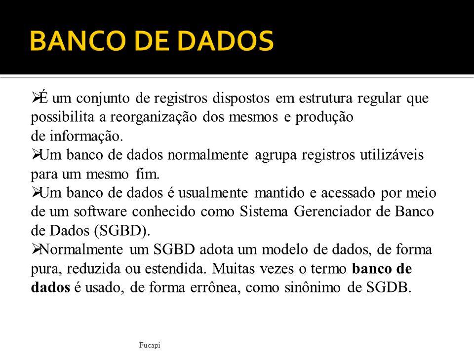 BANCO DE DADOS É um conjunto de registros dispostos em estrutura regular que possibilita a reorganização dos mesmos e produção de informação.