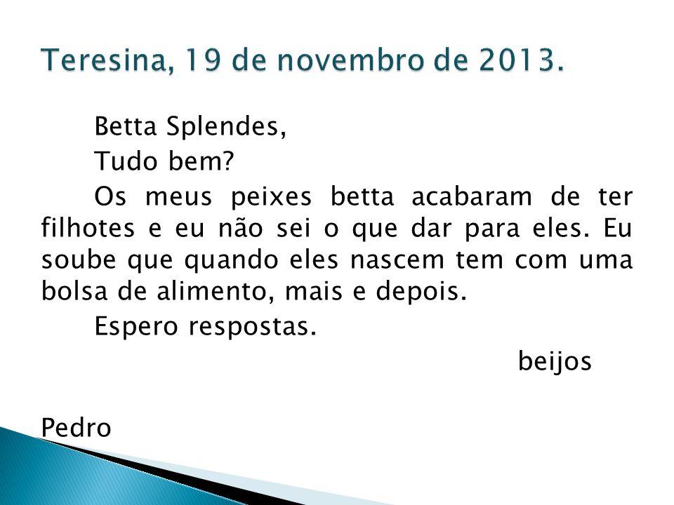 Teresina, 19 de novembro de 2013.