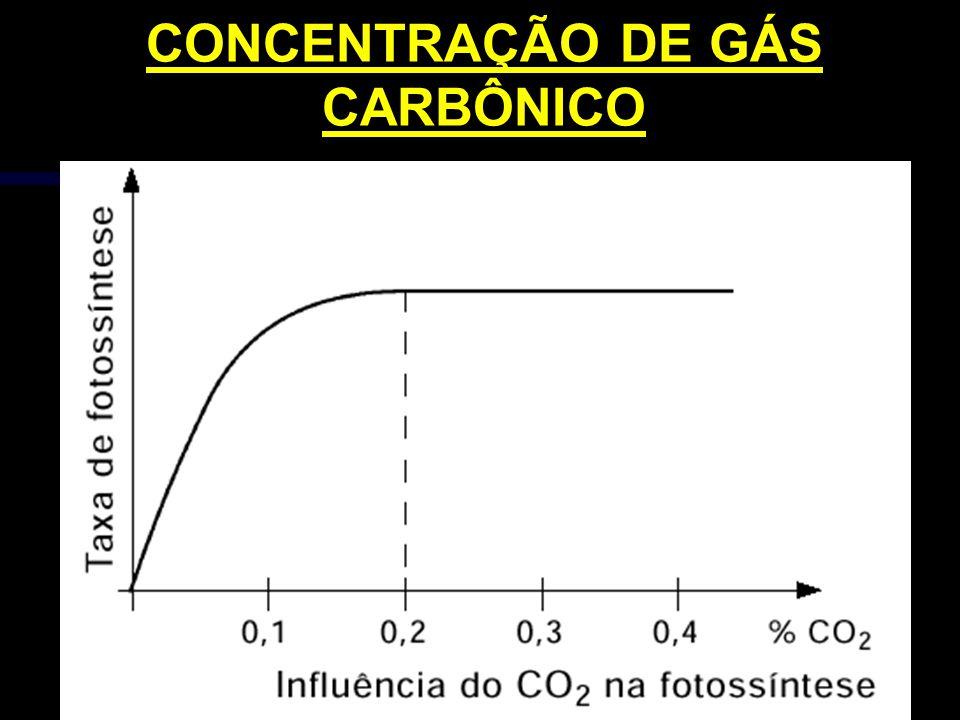CONCENTRAÇÃO DE GÁS CARBÔNICO