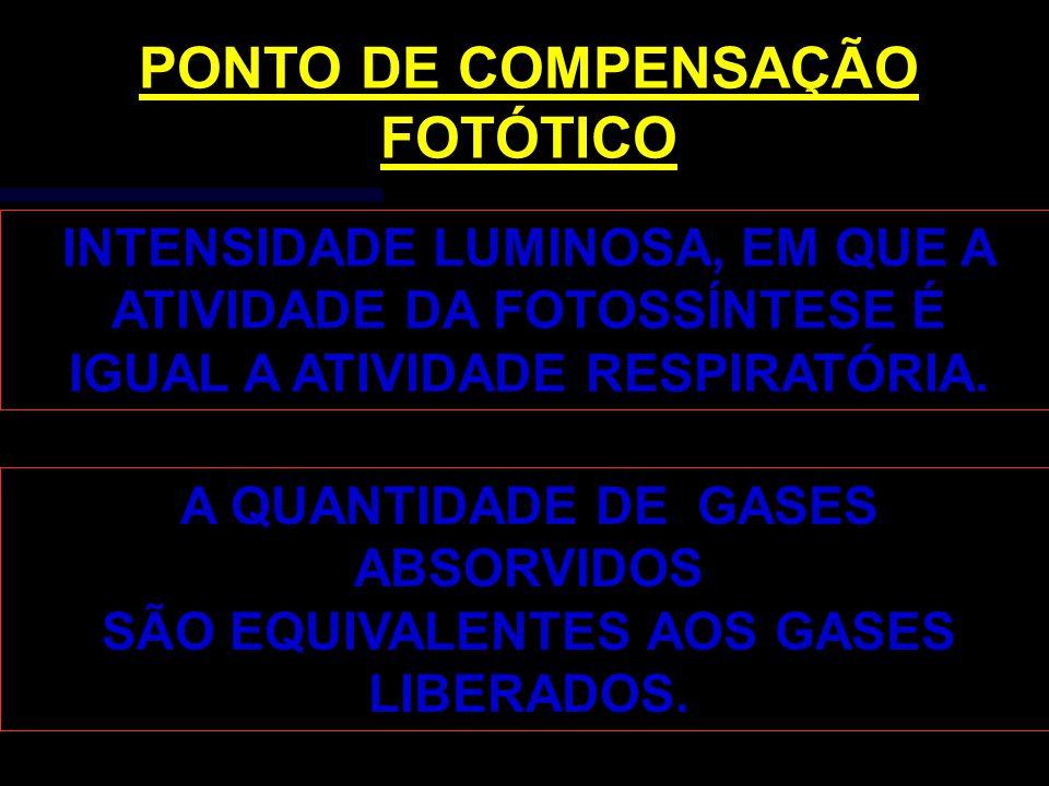 PONTO DE COMPENSAÇÃO FOTÓTICO