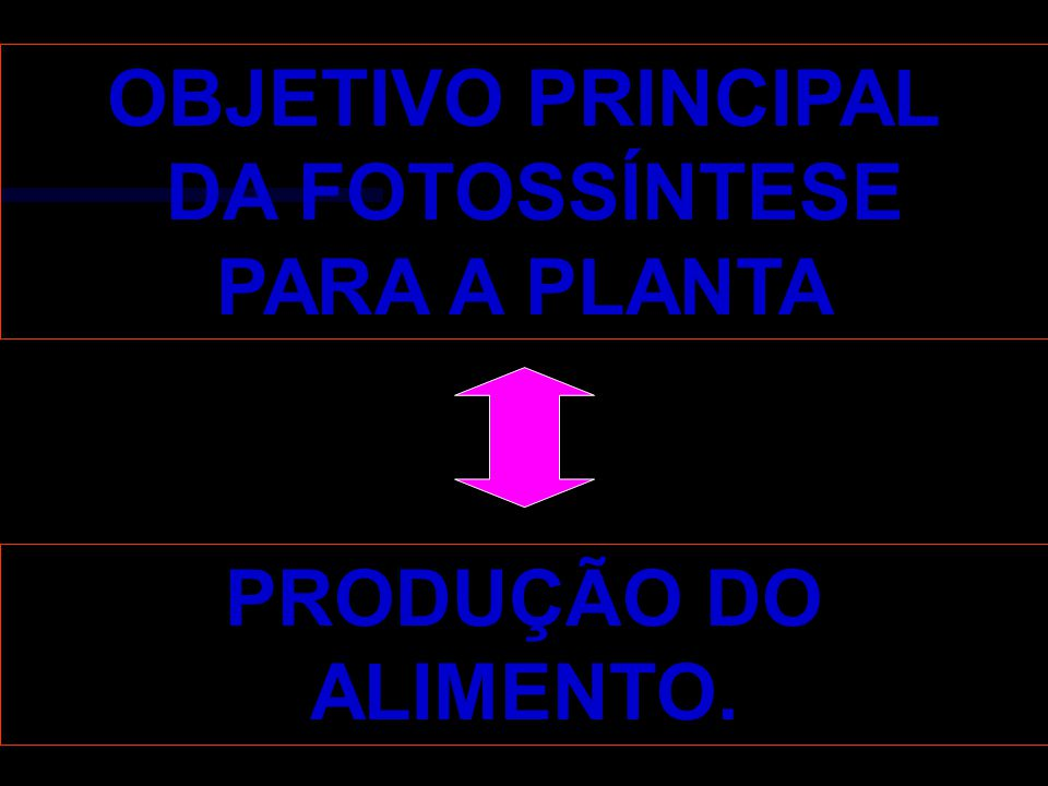 OBJETIVO PRINCIPAL DA FOTOSSÍNTESE PARA A PLANTA PRODUÇÃO DO ALIMENTO.