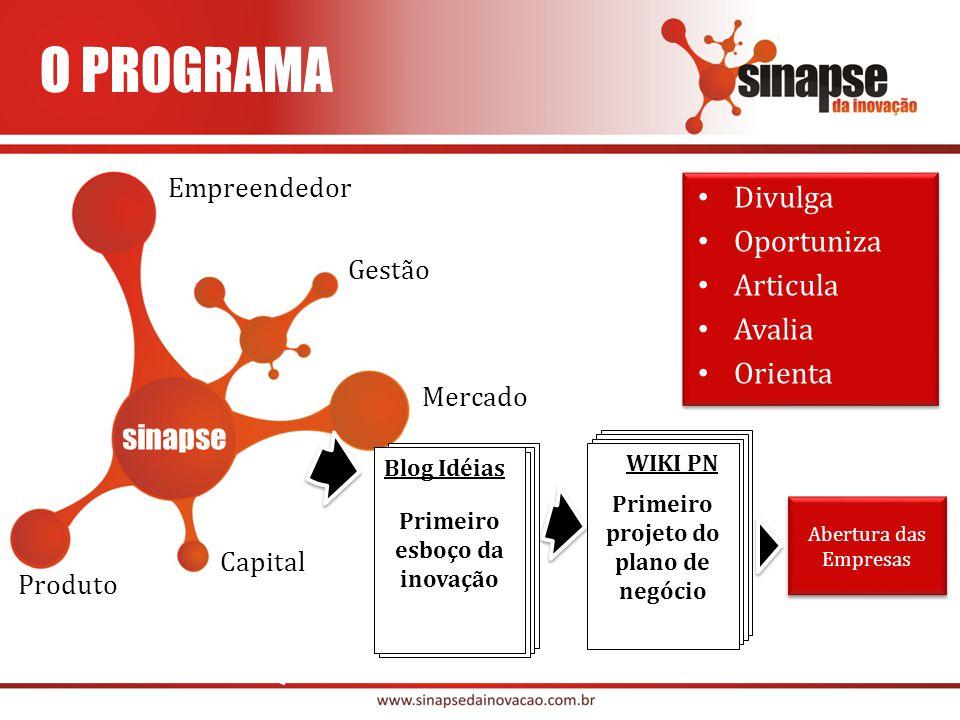Primeiro esboço da inovação Primeiro projeto do plano de negócio