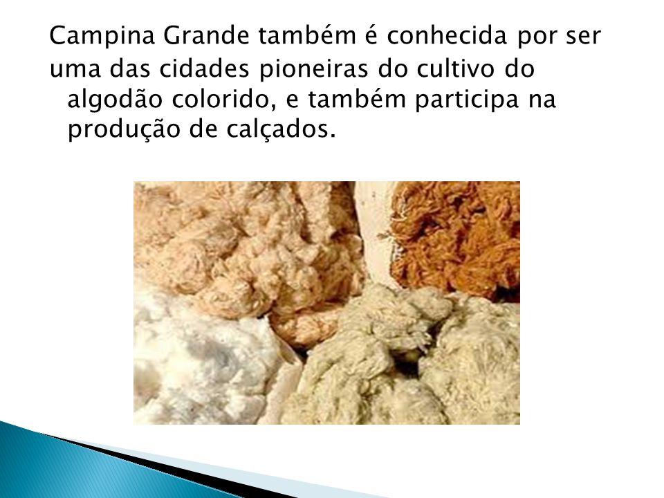 Campina Grande também é conhecida por ser uma das cidades pioneiras do cultivo do algodão colorido, e também participa na produção de calçados.