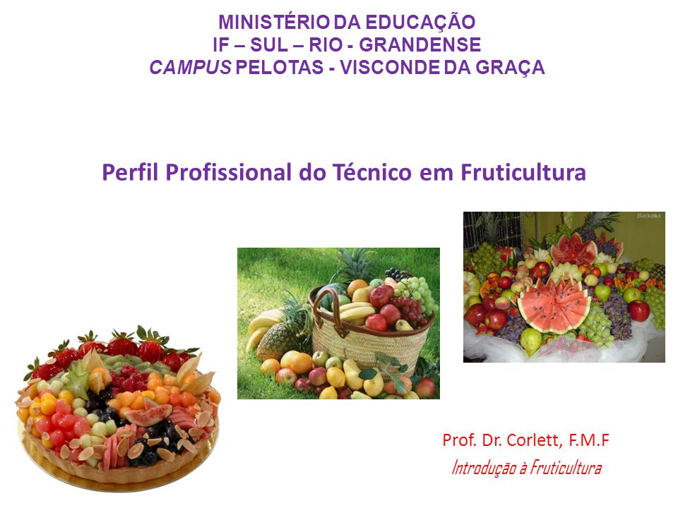 Perfil Profissional do Técnico em Fruticultura