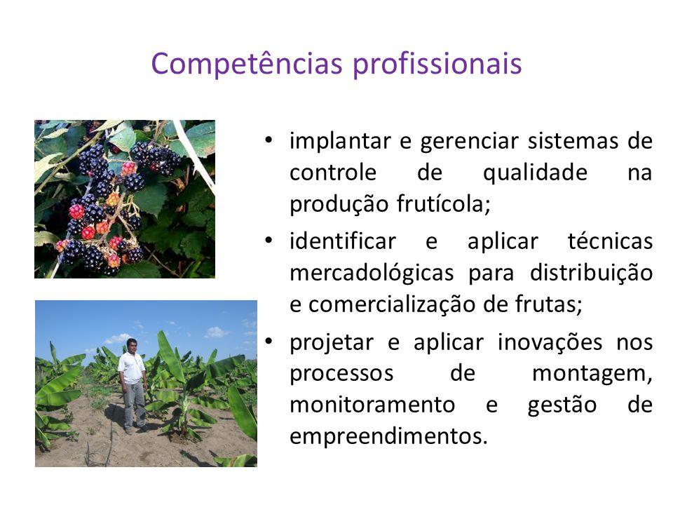 Competências profissionais
