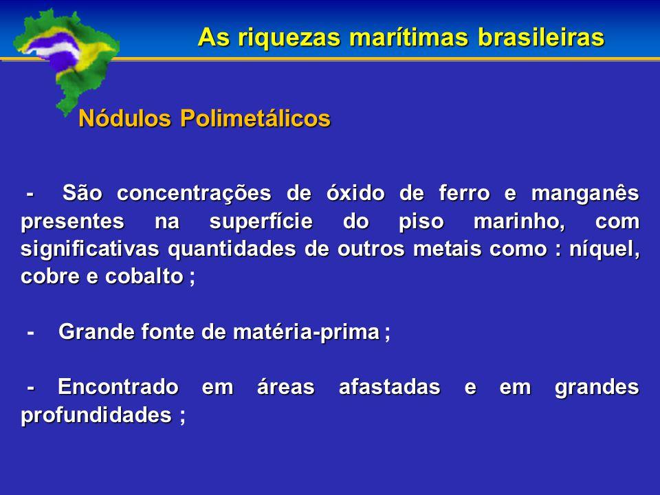 As riquezas marítimas brasileiras