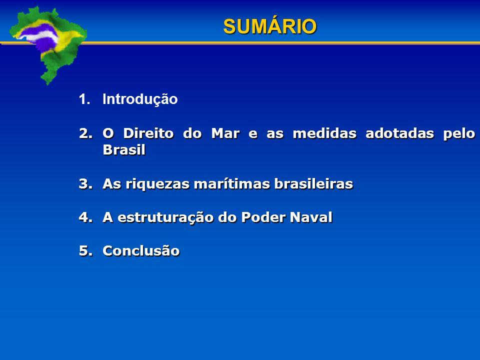 SUMÁRIO Introdução O Direito do Mar e as medidas adotadas pelo Brasil